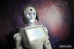 Выставка роботов. Пермь , робототехника, робот