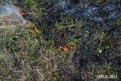Старообрядческие села Роща и Платоново и деревня Симонята. Свердловская область, Шалинский район, пожар в поле, горит трава, пожароопасная обстановка