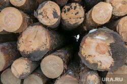 Разное. Курган, Шадринск, пиломатериал, дерево, склад древесины, лес строительный