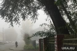 Туман в городе. Челябинск, городской пейзаж, климат, осень, туман, улица витебская