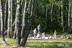 Гилевская роща. Тюмень, отдых в лесу, отдых в парке, гилевская роща