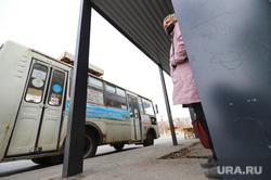 Остановочные комплексы. Курган, автобусная остановка, пассажир, автобус, ожидание автобуса