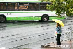 Дождливый день. Тюмень, пешеходный переход, непогода, автобус, люди с зонтами, дождь, человек с зонтом