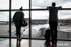 Аэропорт Шереметьево, терминал