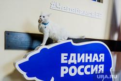 Илья Коломейский заявился на предварительное голосование (праймериз) «Единой России». Челябинск, единая россия, кот рося