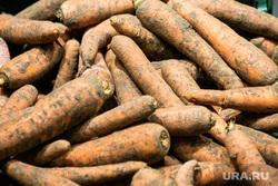 Клипарт Овощи и фрукты. Тюмень, овощи, морковь