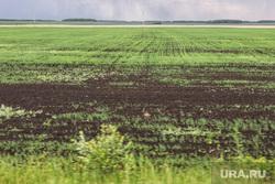 Председатель совета директоров ПАО «Газпром» Виктор Зубков посетил Сафакулевский район. Курган, поле, земля, посев пшеницы