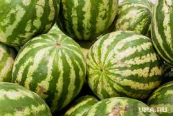 Клипарт Овощи и фрукты. Тюмень, фрукты, арбузы