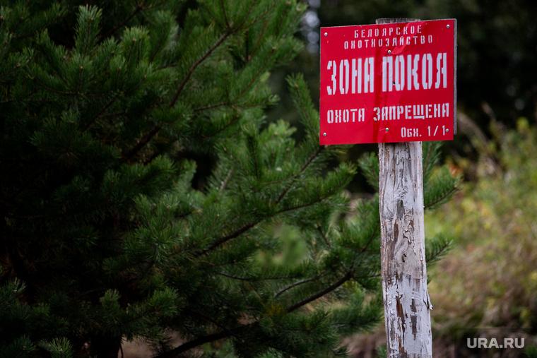 Учения СОБР и кинологической службы таможни на территории Белоярского района. Свердловская область, знак, охота запрещена, зона покоя, белоярское охотхозяйство