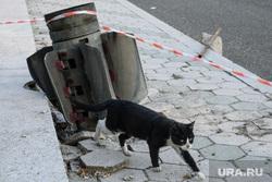 Город Шуши после обстрелов ВС Азербайджана. Нагорный Карабах, кот, неразорвавшийся снаряд, снаряд рсзо смерч, уличное животное