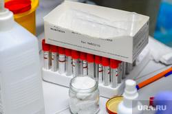 Тест на коронавирус в лаборатории. Челябинск, лаборатория, пробирка, колбы, забор крови, медицина, колбочки, коронавирус, тест на ковид