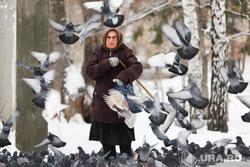 Кормление голубей у Храма Александра Невского. Курган, пенсионерка, кормление птиц, бабушка, голуби