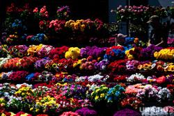 Похороны Владимира Таушанкова на Лесном кладбище. Екатеринбург, поминки, похоронный бизнес, цветы, похороны, кладбище