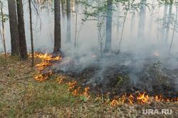 Верховые пожары в поселках Джабык и Запасное. Челябинская область, лесной пожар
