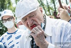 Сбор клубники в совхозе им. Ленина. Москва, жириновский владимир