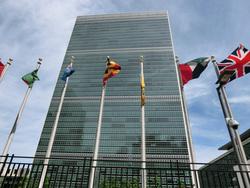 Открытая лицензия на 04.08.2015. ООН., оон