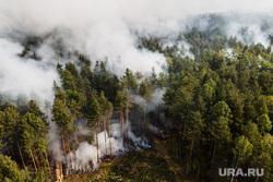 Лесной пожар на озере Глухое. Свердловская область, лес горит, лесной пожар, пожар в лесу, дым в лесу, пожар у озера глухое