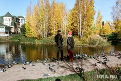 Осень. Тюмень, золотая осень, голуби
