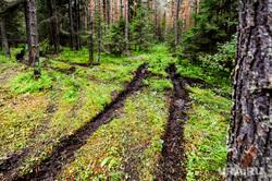 Национальный парк «Зигальга» и «Зюраткуль». Поселок Тюлюк. Челябинская область, лес, перекресток, заповедник, колея, природа