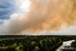 Горящий лес возле горы Волчиха. Свердловская область , первоуральский городской округ, лесной пожар, пожар на волчихе
