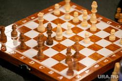 Шахматы. Тюмень, шахматисты, шахматы, шахматная доска, игра в шахматы