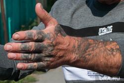 Клипарт, разное. Курганская область, заключенные, рука, уголовник, наколки, вор, татуировки, зэк