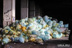 Крематорий. Оцепление. Курган , отходы, мусор в мешках, свалка мусора, медецинские отходы