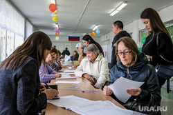 Единый день голосования 2019. Курган, избирательная комиссия, спортивный зал, бюллетени, избирательный участок, голосование, избиратели