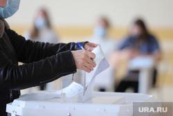 Выборы- 2021. Курган , наблюдатели, выборы, избирательный участок, голосование, урна для голосования, бюллетень, выборы 2021