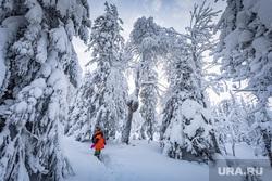 Зимняя природа. Урал, зима, зимний лес, северный урал, зимний урал, урал зимой