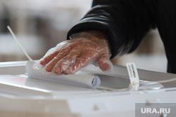 Выборы- 2021. Курган , коиб, выборы, избирательный участок, голосование, урна для голосования, бюллетень, санитарные нормы, перчатки одноразовые, выборы 2021
