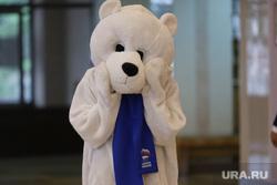 Конференция ЕР. Курган , ер медведь, единая россия, ер, медведь единая россия