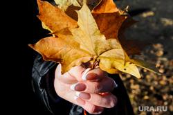 Золотая осень в кленовом парке. Челябинск, маникюр, золотая осень, кленовый парк, кленовый лист