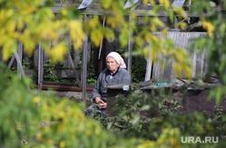 Разное. Курган, старость, старушка, пенсия, женщина, пенсионеры, осень