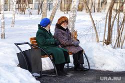 Город. Курган, домашние животные, пенсия, пенсионерки на скамейке, женщины на лавочке, зима, домашняя собака