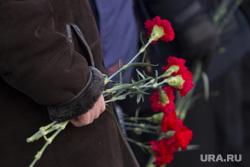 Клипарт. Екатеринбург, гвоздики, траур, цветы