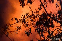 Пожар в деревянном доме по улице 8 марта. Екатеринбург, пламя, огонь, лесной пожар, дерево