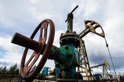 Качалки. Сургут, газ, газпром, топливо, роснефть, качалка, экономика, нефть, задвижка, месторождение, нефтедобыча, запорная арматура, добыча нефти, черное золото, природные ресурсы, лукоил, сургутнефтегаз, куст нефтегазовый, цены на нефть, винтиль