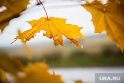 Верхотурье, Меркушино, Актай, Свято-Косминская пустынь., листья, дождь, осень