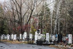 Рябковское кладбище. Курган, могилы, рябковское кладбище, кладбище