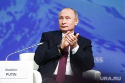 Путин. Ретач, портрет, путин владимир