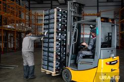 Прибытие первых крупных поставок плодоовощной продукции из Узбекистана. Екатеринбург, склад, погрузчик, разгрузка товара