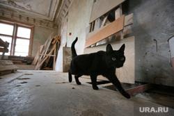 Съемки нового фильма Алексея Федорченко