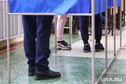 Ситникова Елена на выборах. Курган, избирательная комиссия, кабинки для голосования, выборы, избирательный участок, голосование, санитарные нормы