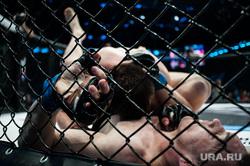 Турнир по смешанным единоборствам RCC2: Russian Cagefighting Championship в КРК