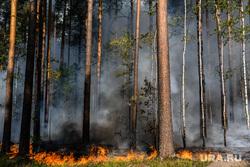 Лесной пожар на озере Глухое. Свердловская область, пожар, огонь, лес горит, лесной пожар, пожар в лесу, пожар у озера глухое