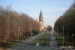 Улицы и окрестности Калининграда весной. Калининград, кафедральный собор, калининград, остров канта
