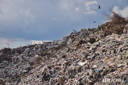 Шуховский полигон. Курган , мусор, тбо, отходы, свалка, шуховский полигон, шухинский полигон, отбросы