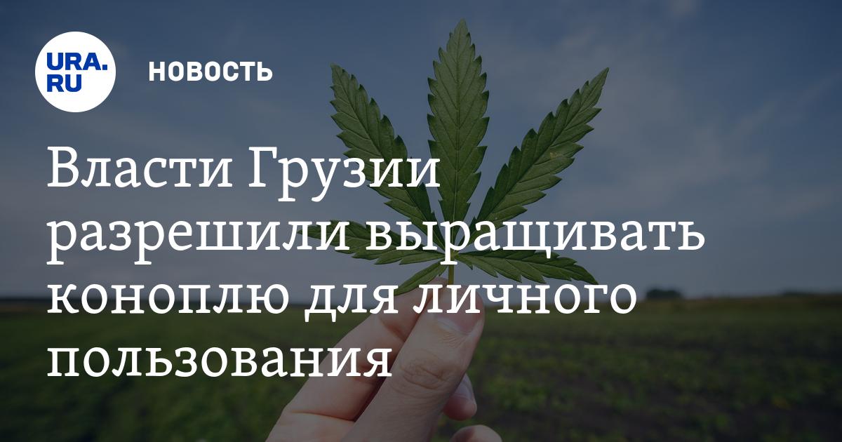 Поправки в закон выращивание конопли купить семена конопли в украине наложенным платежом